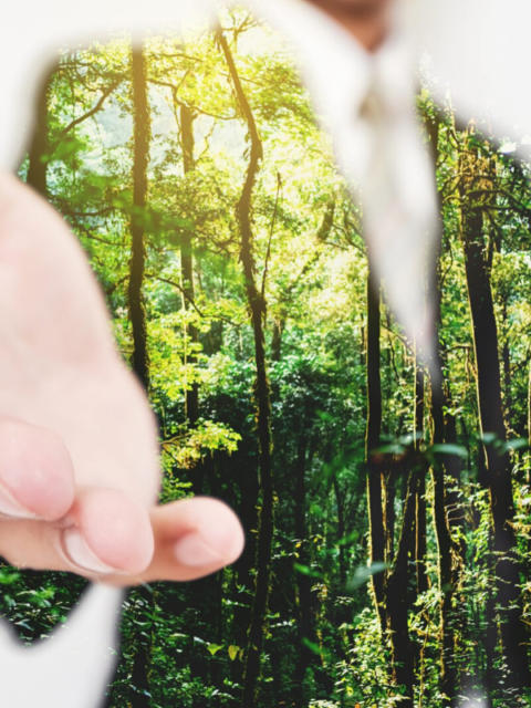 sustainability practices